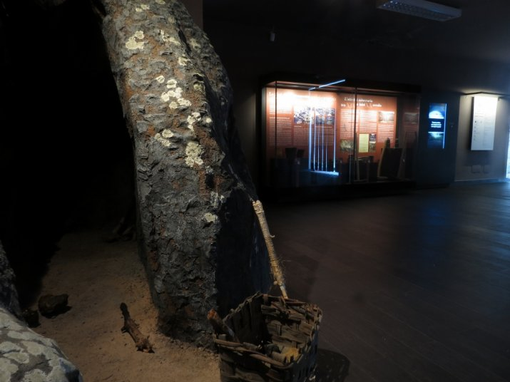 museo_mucast